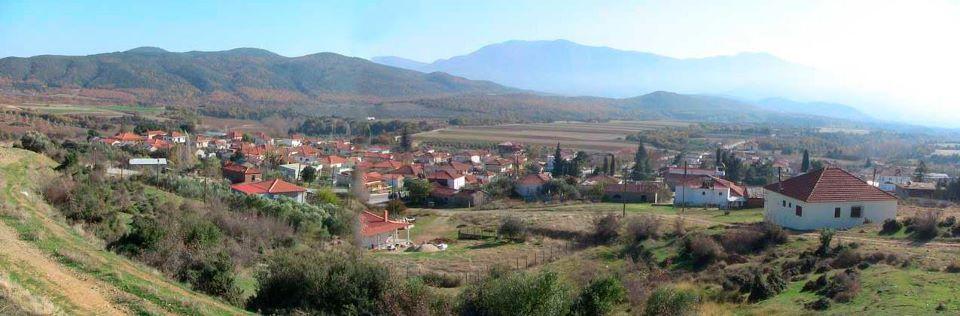 Βαμβακιά Θεσσαλονίκης