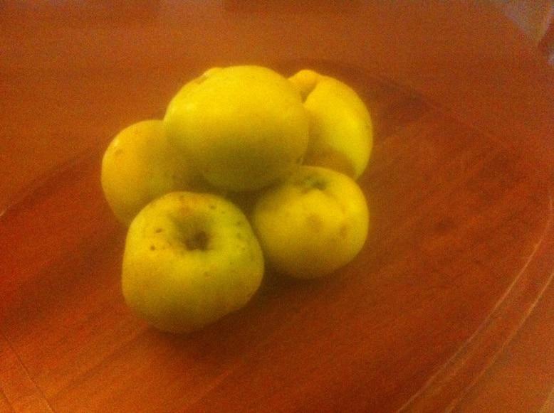 Κυδώνι και ιδιότητες το χρυσό μήλο
